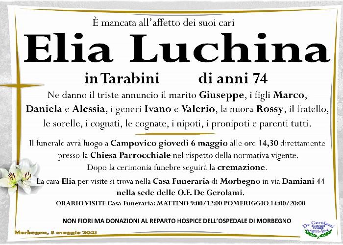 Luchina Elia: Immagine Elenchi