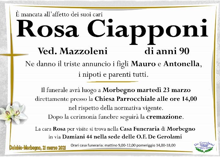 Ciapponi Rosa: Immagine Elenchi